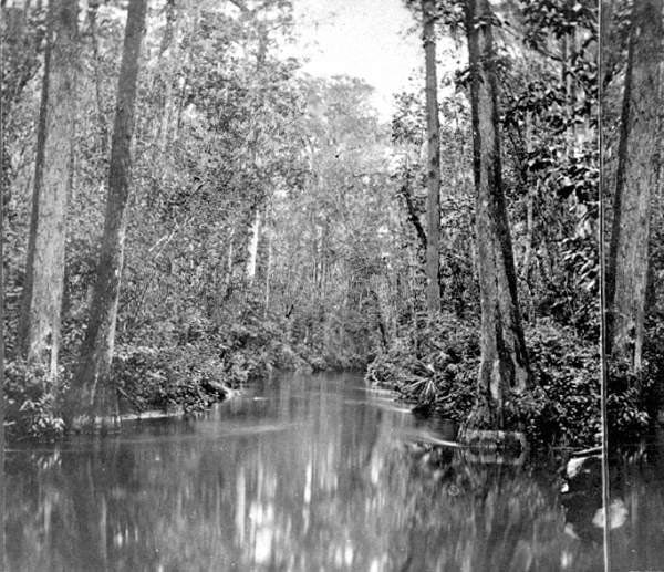 The Ocklahawa River
